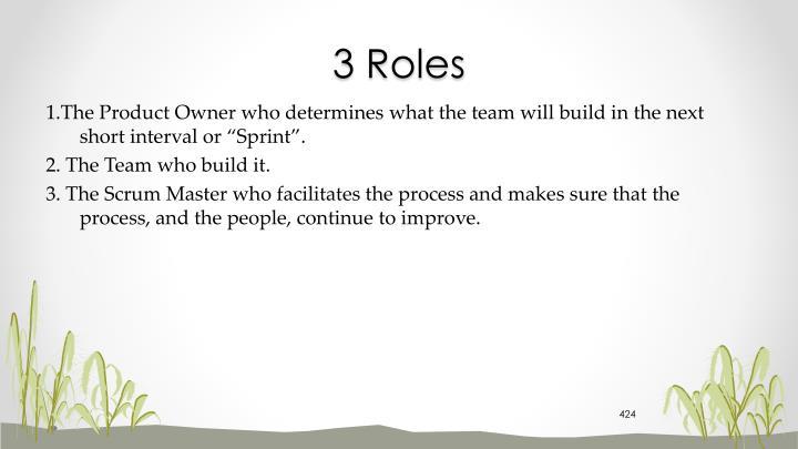 3 Roles