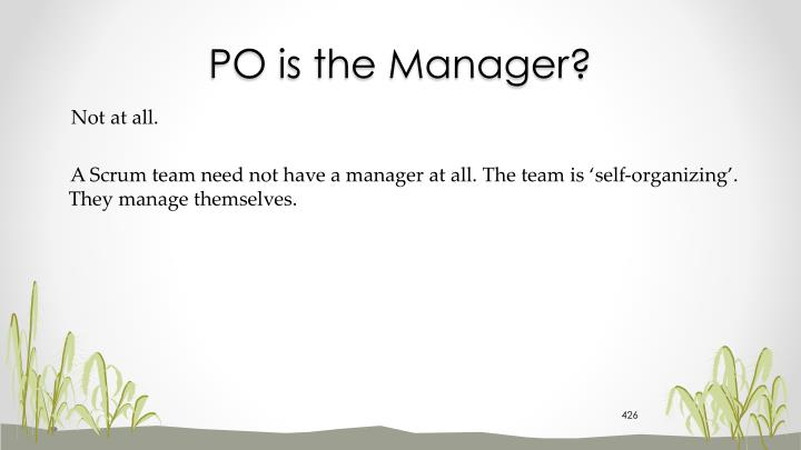 PO is the Manager?