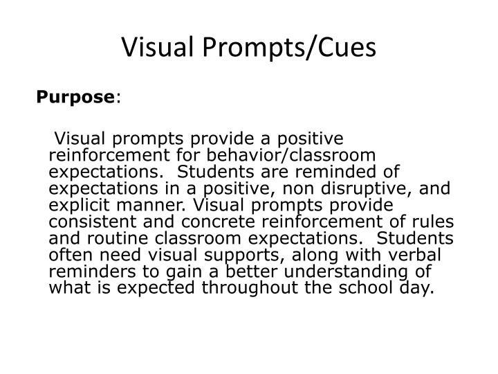 Visual Prompts/Cues