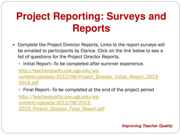 Project Reporting: Surveys and Reports