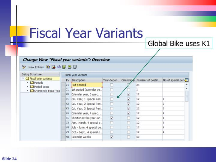 Fiscal Year Variants