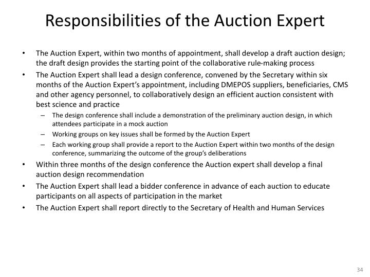 Responsibilities of the Auction Expert