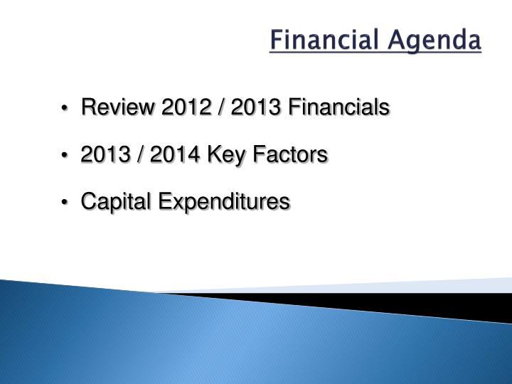 Review 2012 / 2013 Financials