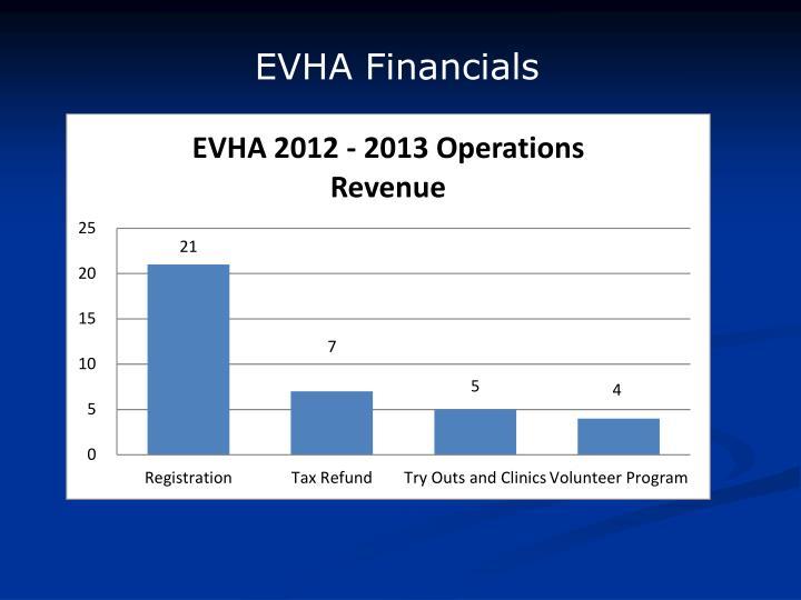 EVHA Financials