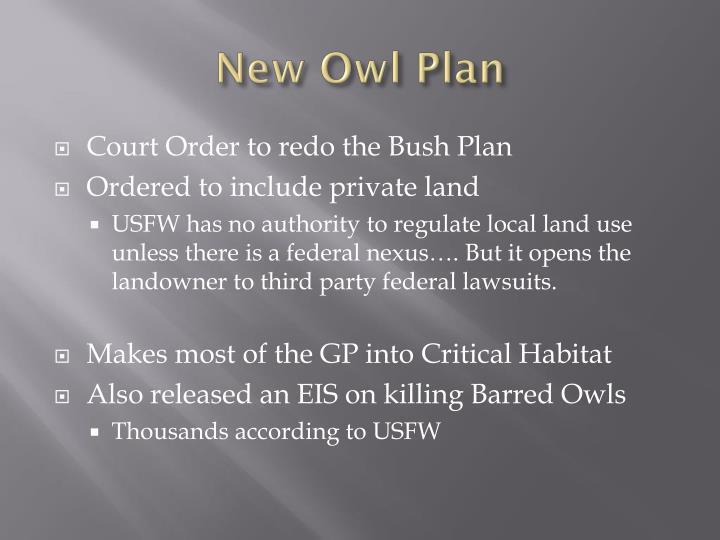 New Owl Plan