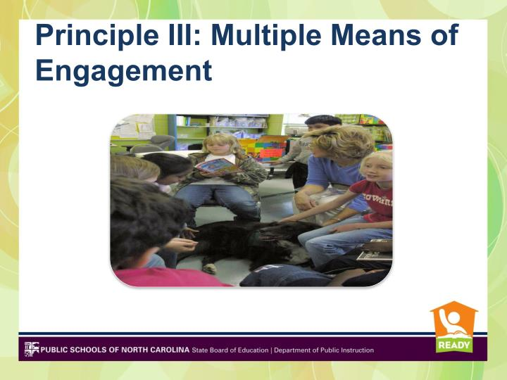 Principle III: Multiple Means of Engagement
