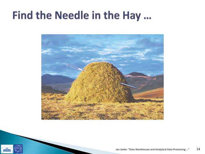Find the Needle in the Hay …