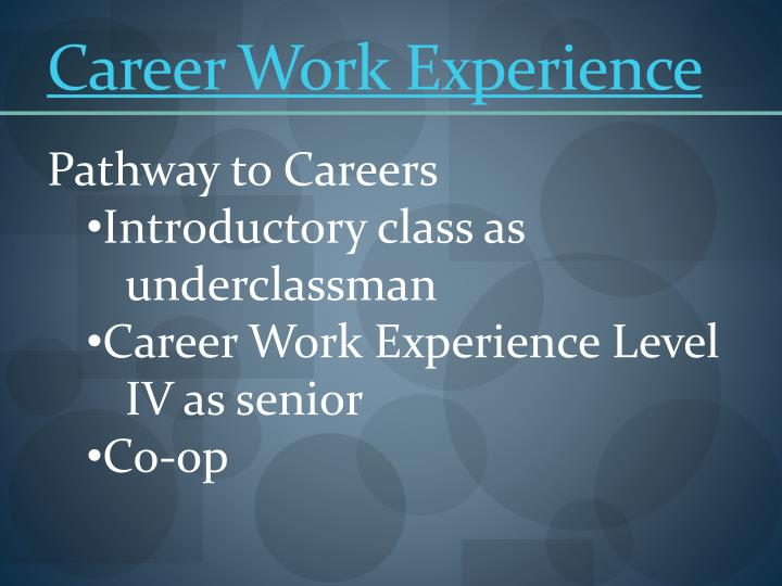 Career Work Experience