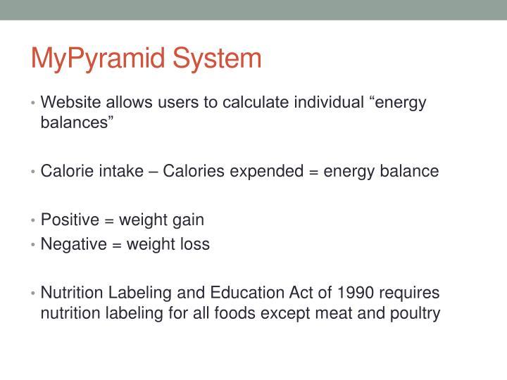 MyPyramid System