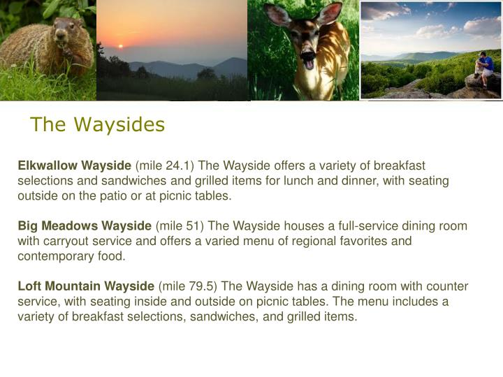 The Waysides