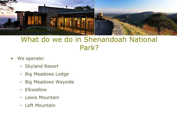 What do we do in Shenandoah National Park?