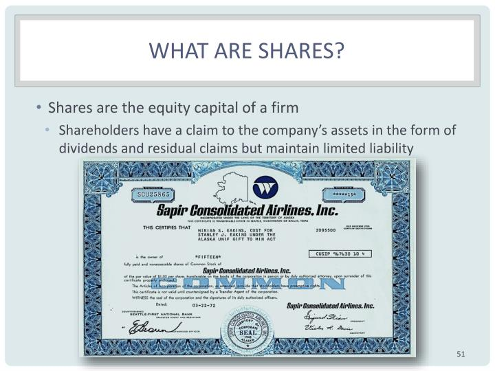 What are shares?