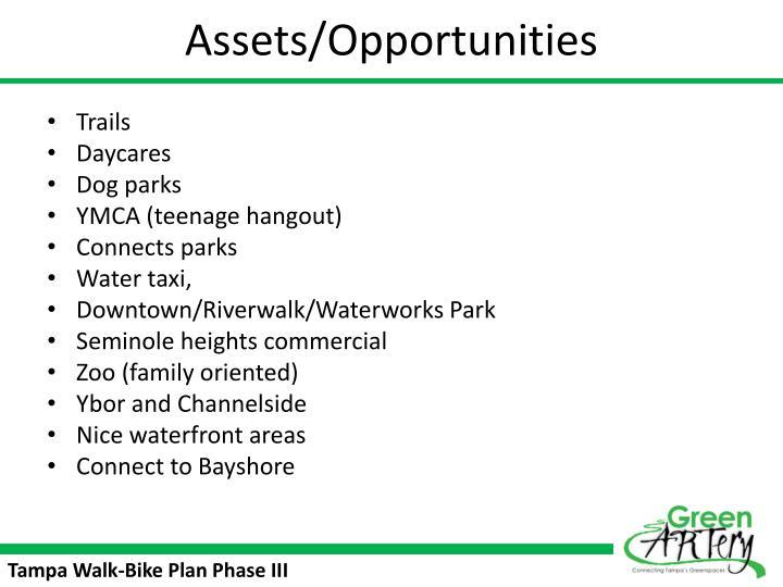 Assets/Opportunities
