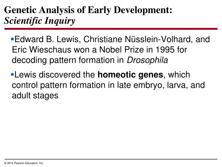 Genetic Analysis of Early Development:
