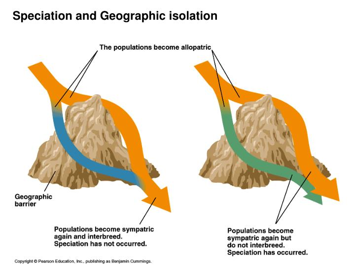 Speciation and Geographic isolation
