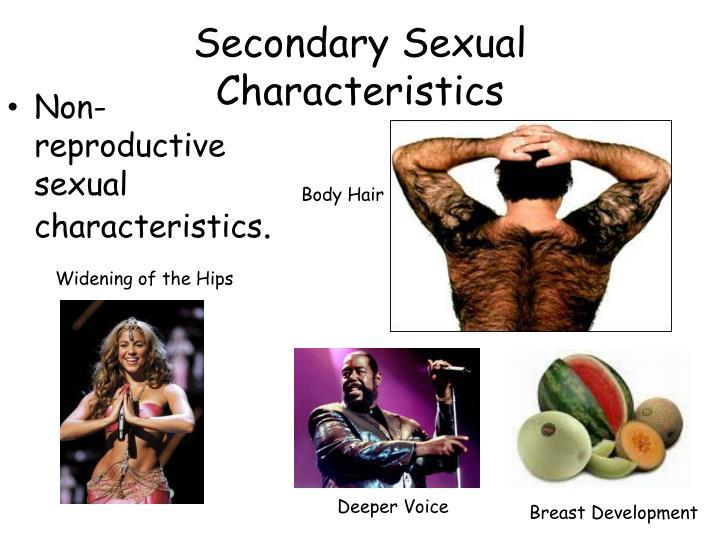 Secondary Sexual Characteristics
