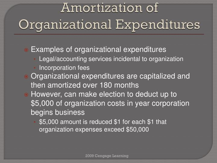 Amortization of