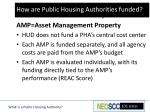 phas and the amp system