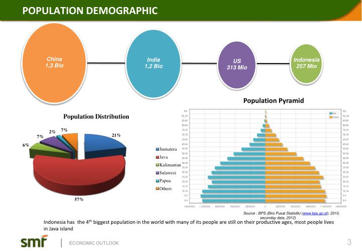 POPULATION DEMOGRAPHIC
