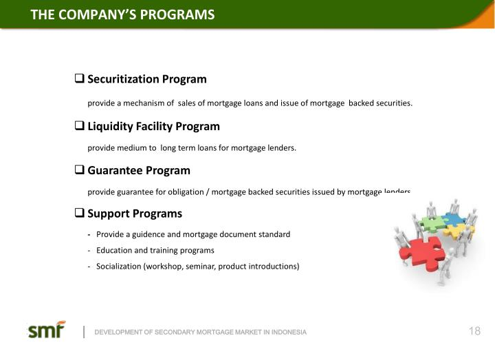 THE COMPANY'S PROGRAMS