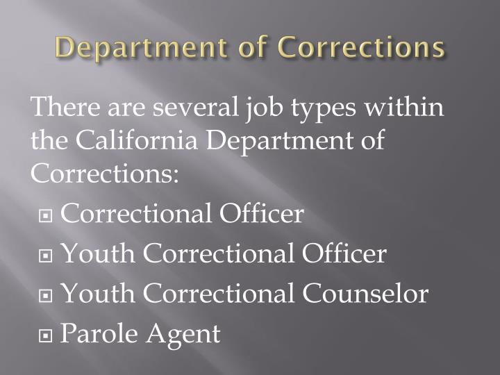 correctional officer correctional officers cos work in many different