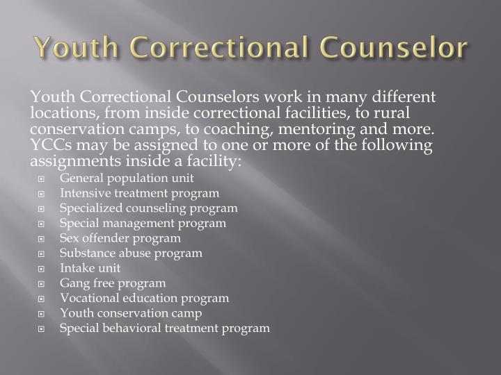 youth correctional counselor