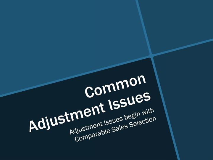 Common Adjustment Issues