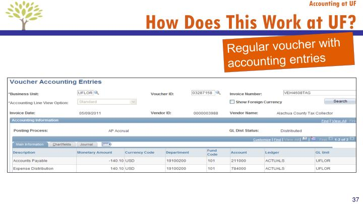 Accounting at UF