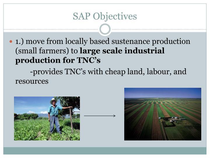SAP Objectives
