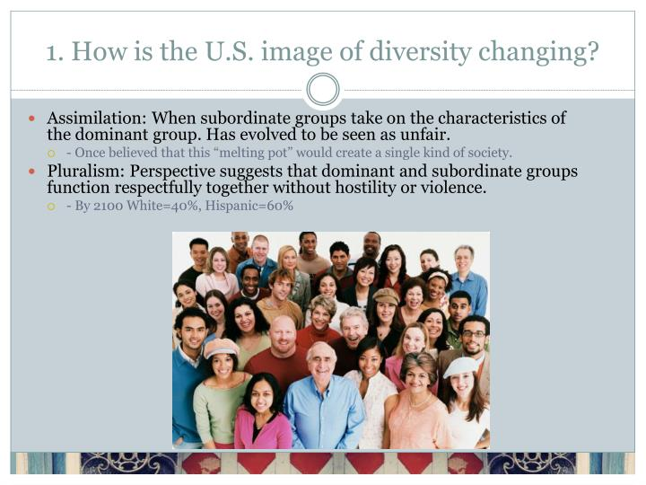 1 how is the u s image of diversity changing