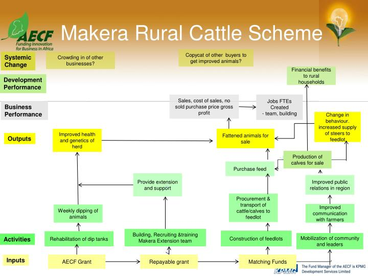 Makera Rural Cattle Scheme