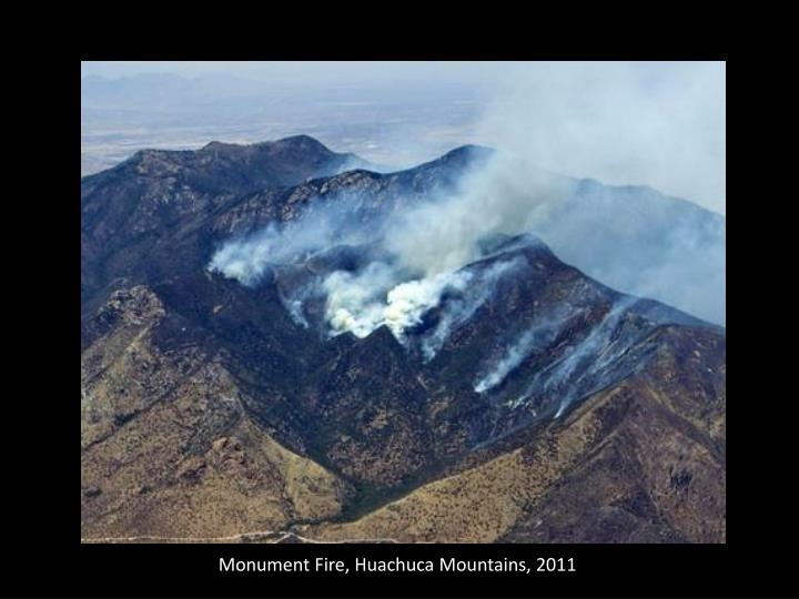 Monument Fire, Huachuca Mountains, 2011