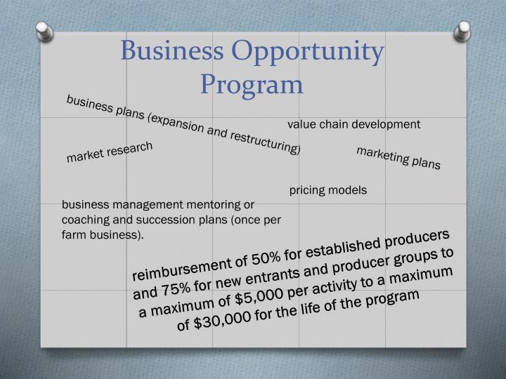 Business Opportunity Program