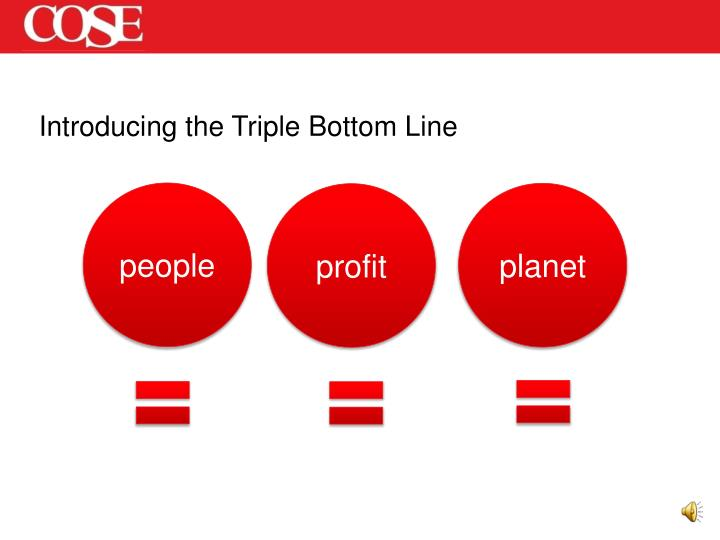 Introducing the Triple Bottom Line
