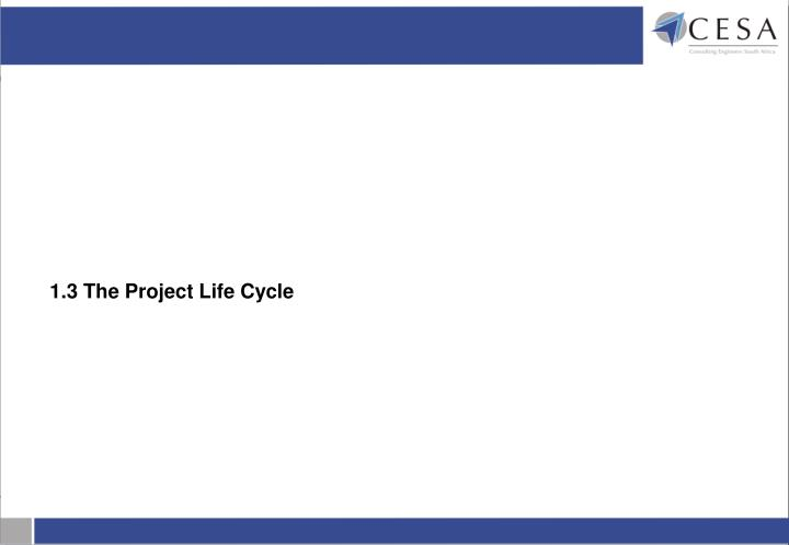 1.3 The Project Life Cycle