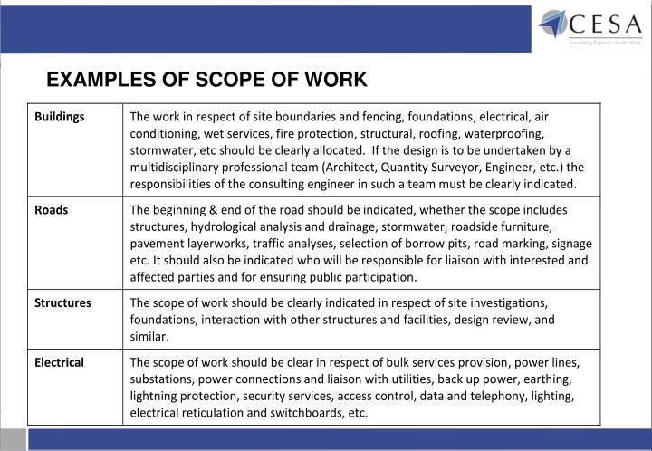 EXAMPLES OF SCOPE OF WORK