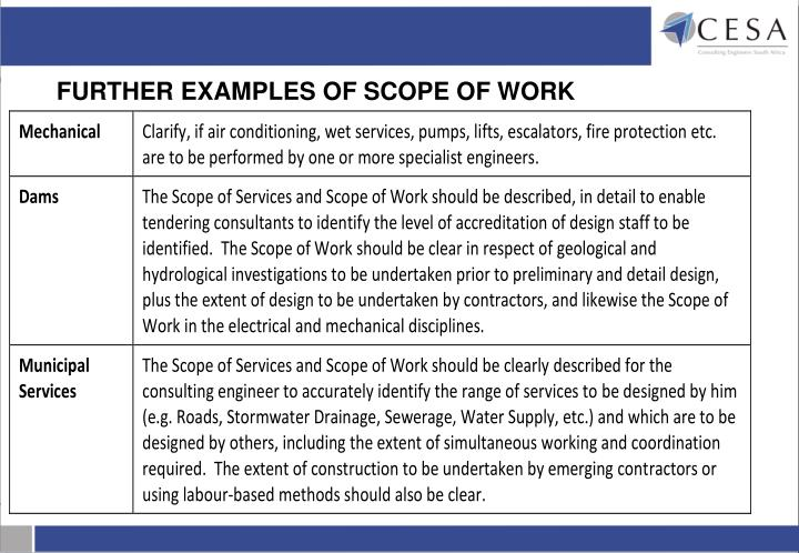 FURTHER EXAMPLES OF SCOPE OF WORK