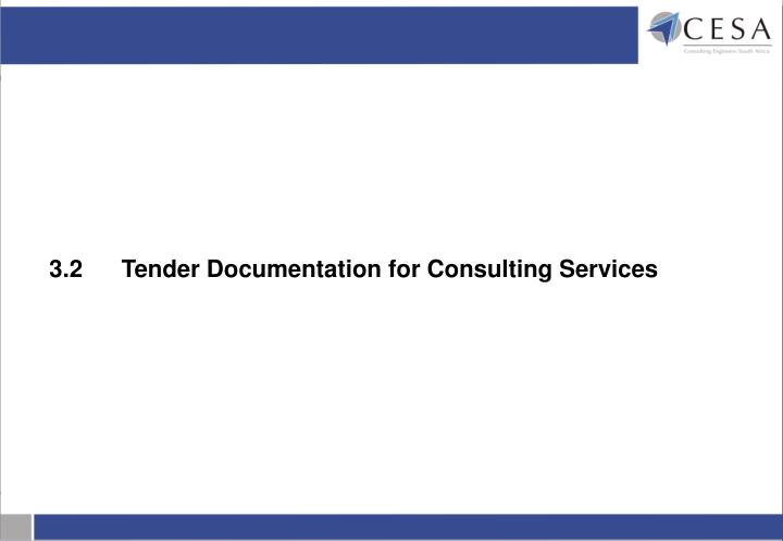 3.2	Tender Documentation for Consulting Services