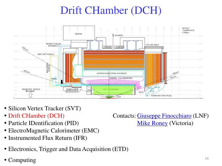 Drift CHamber (DCH)