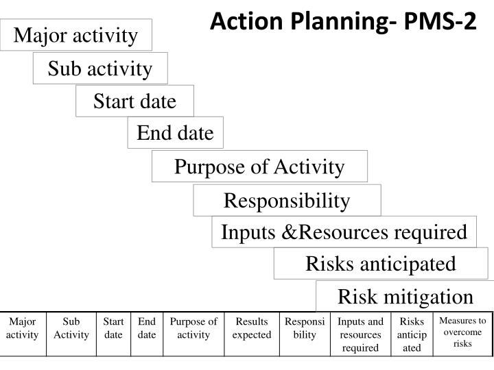 Action Planning- PMS-2