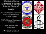what are some examples of special interest groups2
