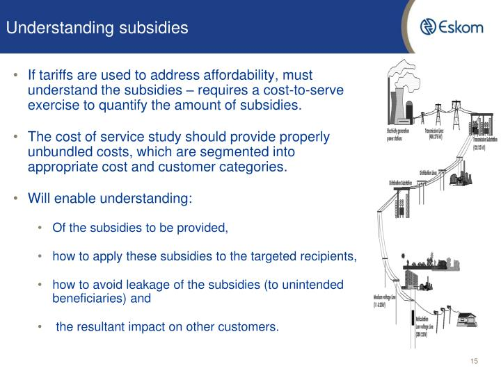 Understanding subsidies