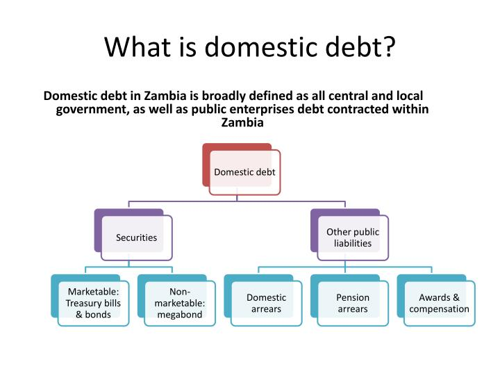 What is domestic debt?
