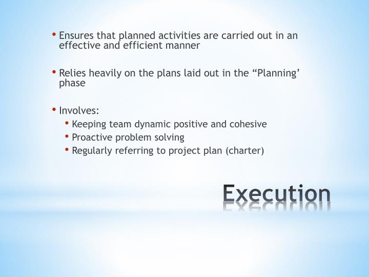 Ensures that planned activities are carried out in an effective and efficient manner