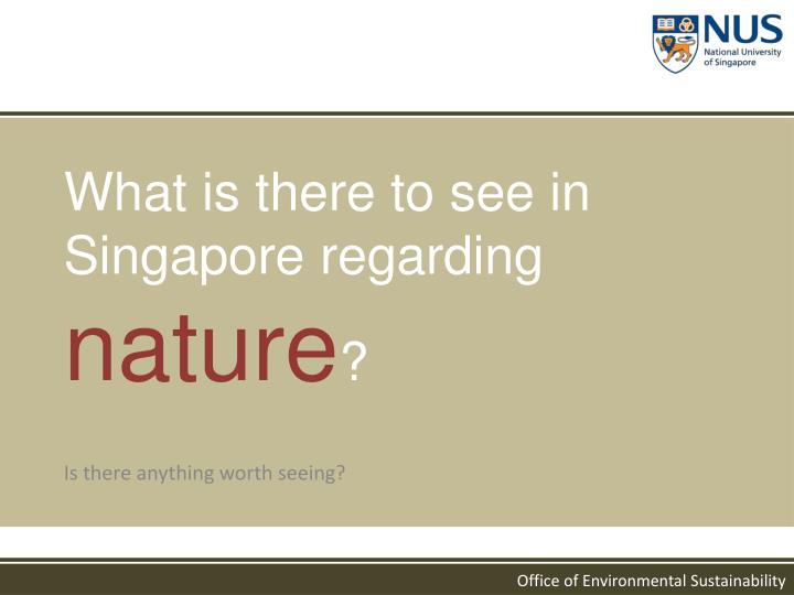 What is there to see in Singapore regarding