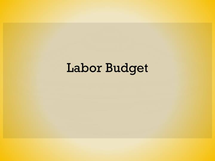 Labor Budget