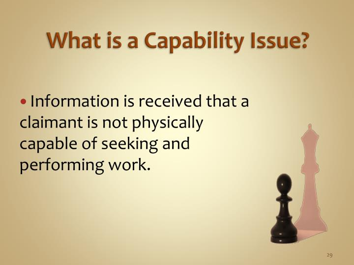 What is a Capability Issue?