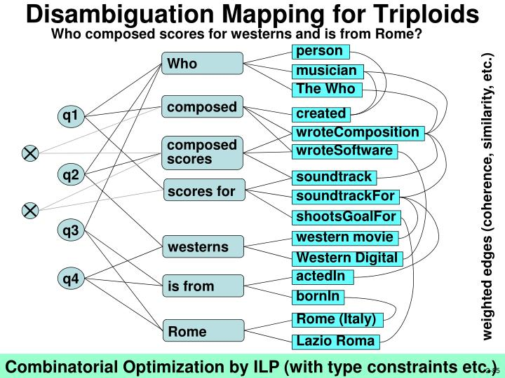 Disambiguation Mapping for Triploids