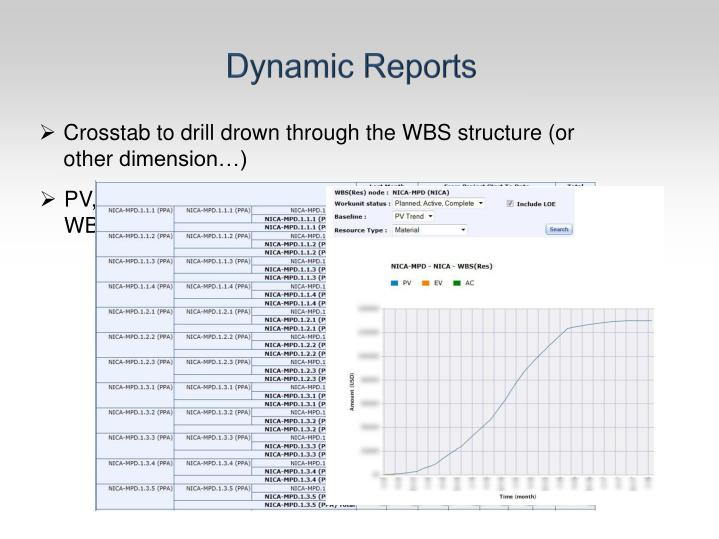 Dynamic Reports