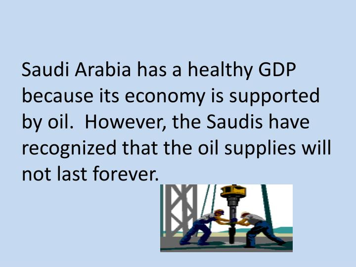 Saudi Arabia has a healthy GDP because its economy is supported by oil.  However, the Saudis have recognized that the oil supplies will not last forever.